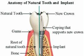 dental-practice-johannesburg